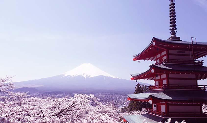 日本 国内 生地